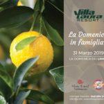 La Domenica dei Limoni